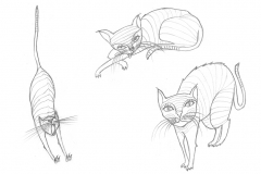 Aus dem Skizzenbuch -  Katze2