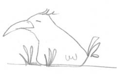 Aus dem Skizzenbuch -  Vogel02